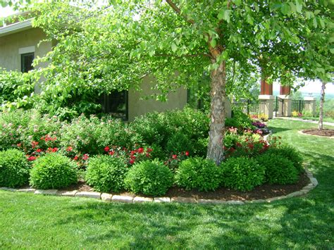 price of trees for landscaping smart landscaping means lower energy costs higher home value eden prairie real estate experts