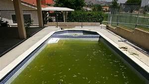 Pool Aufblasbar Groß : pools are gross new cdc study confirms the verge ~ Yasmunasinghe.com Haus und Dekorationen