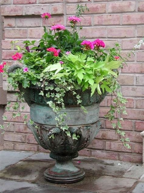 planting urns ideas 100 best images about garden urn ideas on pinterest simply southern fall containers and fall