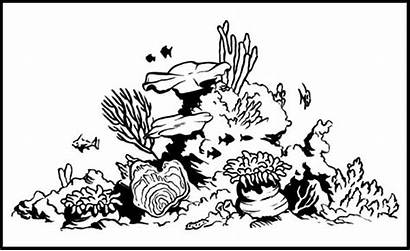 Reef Coral Drawing Coloring Fish Pages Easy
