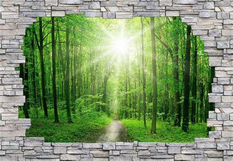Fototapete 3d Natur by 3d Fototapete 187 3d Forest Mauer 171 384 260 Cm Otto