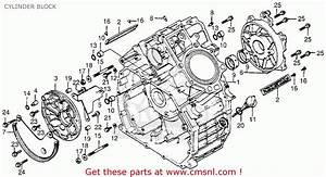 Diagram  Honda 250 Engine Diagram Full Version Hd Quality
