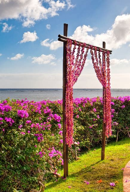 Best 25 Rustic Wedding Alter Ideas On Pinterest Alter