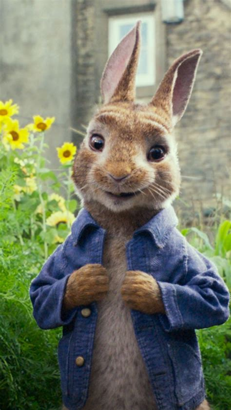 wallpaper peter rabbit  movies