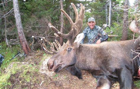 Island Safaris Newfoundland Big Game Hunting Outfitter