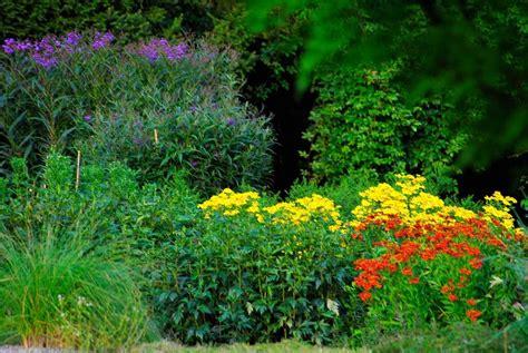 Freunde Botanischer Garten Bielefeld by Pflanzenwelten 171 Verein Freunde Des Botanischen Gartens
