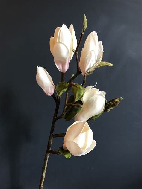 branches  realistic white magnolia heavenly homes