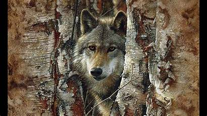 Wolf Spirit Pack Quotes Cool Spiritual Wolves