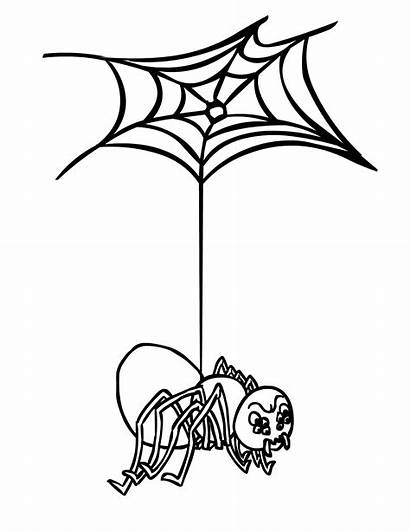 Spider Coloring Web Pages Printable Outline Clipartmag