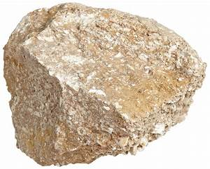 Image Gallery limestone sedimentary rock