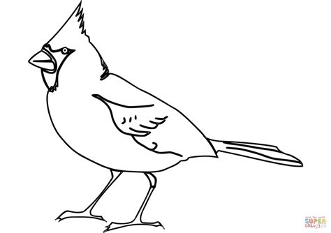 cardinals football coloring pages  getcoloringscom