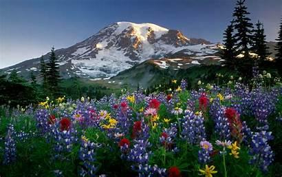 Wallpapers Spring Mountain Mountains Widescreen Desktop Backgrounds