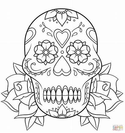Skull Roses Coloring Pages Sugar Rose Printable