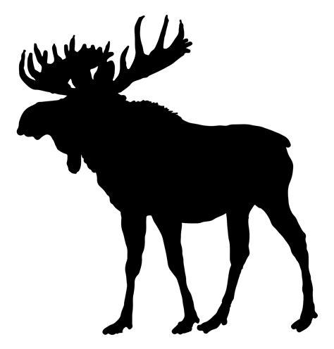 Moose Clip Art Clipart Library