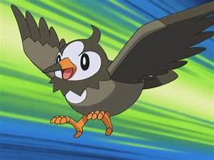 Starly - The Pokémon Wiki