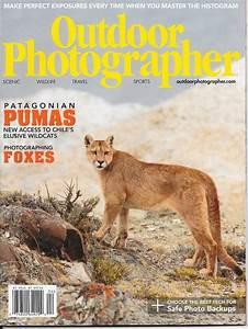 Wildlife Photo Tours  U0026 Workshops