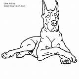 Dane Dog Drawings Coloring Line Stencil Drawing Danes Animal Own Dogs Quilts Sketches Draw Printable Colouring Puppy Sheets Sketch Template sketch template