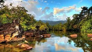Madagascar Rainforest Wonderland Package - AAA Travel Africa