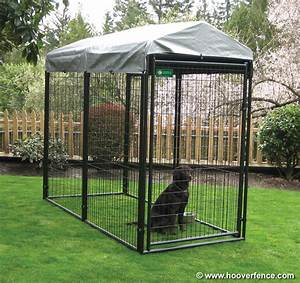 Town country dog kennel for Puppy dog kennels