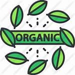 Organic Icon Premium Icons Flaticon Lineal