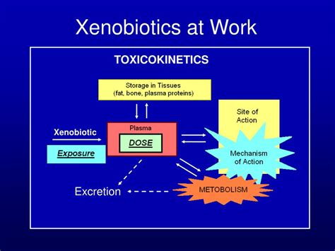 introduction  toxicology powerpoint