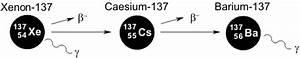 Halbwertszeit Cäsium 137 Berechnen : gef hrlichen isotope c sium 137 iod 131 strontium 90 ~ Themetempest.com Abrechnung