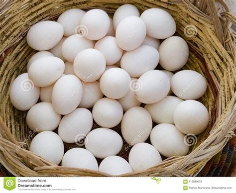 Raw eggs in the shell are good for 3 to 5 weeks in the refrigerator. A lot of a white eggs stock photo. Image of cuisine ...