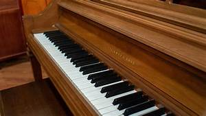 Steinway Model F Upright Piano For Sale