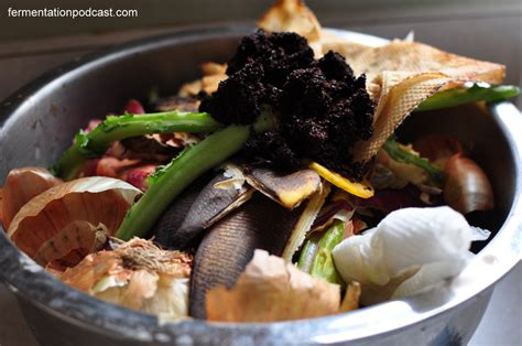 compost cuisine the fermentation podcast creating culture with fermented