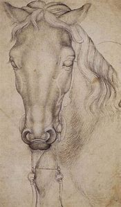 Leonardo Da Vinci Horse Study