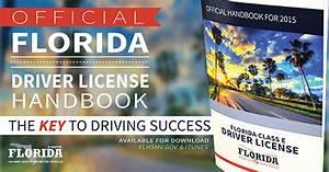 Florida Division Of Motor Vehicle - impremedia.net