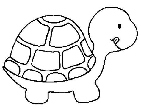 turtle coloring page coloring book turtle coloring