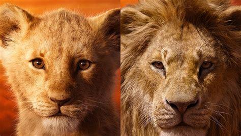 novo  rei leao ganha cartazes individuais  video