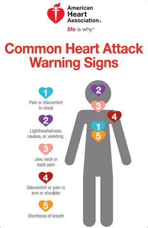 Warning Signs Of A Heart Attack. Marriage And Family Therapy Certificate. It Consulting In Chicago Best 10 Inch Laptops. Chemistry Degree Programs Dentist Rockwall Tx. Hvac Preventive Maintenance Agreement Template. Grand Arc Hanzomon Hotel Tokyo. Seattle Graduate Programs Van Nuys Dui Lawyer. Keller Business School Of Management. Microsoft Dynamics Reviews Local Job Posting