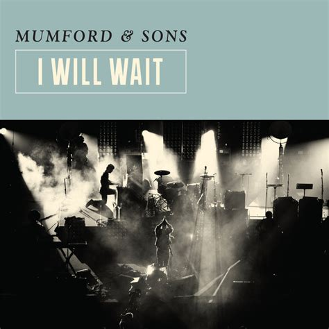 mumford sons i will wait i will wait a song by mumford sons on spotify