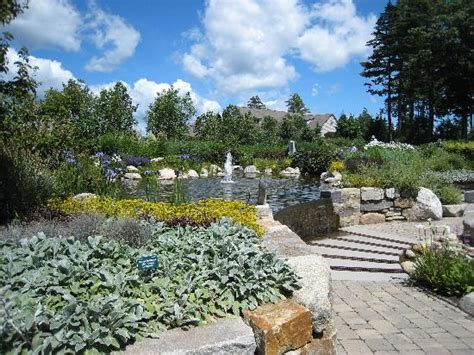 30 Second Exposure  Picture Of Coastal Maine Botanical