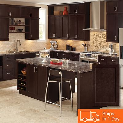 colour kitchen cabinets kitchen cabinets color gallery at the home depot 2364
