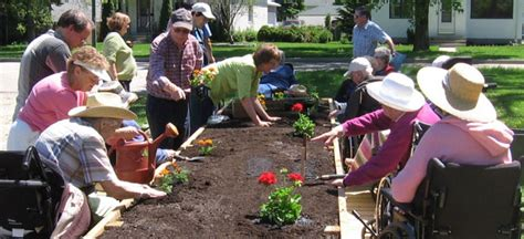how horticultural therapy helps seniors complete senior