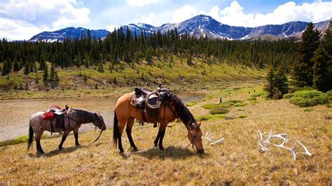 riding horseback places go travel dam