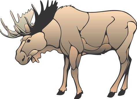 Moose Clip Art Clipart Bay