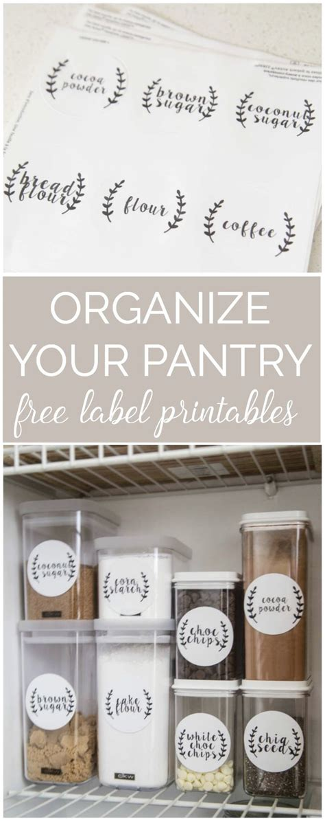 kitchen storage labels top 25 best organize fridge ideas on 3160