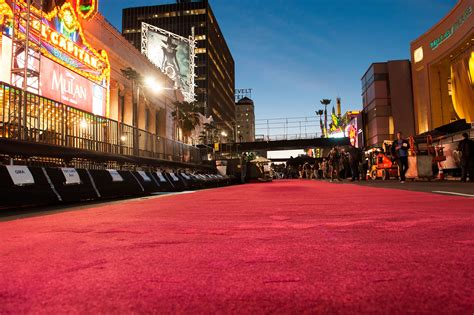 The Surprising, Bizarre, 2,500-year History Of The Oscars' Red Carpet Carpet Contractors Yukon Ok Dry Clean Carpets Worksop Cleaning Companies Lakewood Ca Evergreen Sf How To Remove Tape From Wooden Floor Installation San Marcos California Cleaner Solution Morrisons Decorating A Room With Green