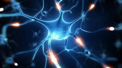 Nerve 4k Cell Wallpapers Yesofcorsa