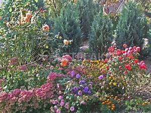 Garten Blumen Bilder : romantischer bunter blumengarten flowers in the garden fotografie als poster und kunstdruck ~ Whattoseeinmadrid.com Haus und Dekorationen
