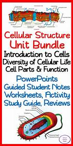 Cellular Structure  U0026 Function 10 Day No Prep Unit Bundle