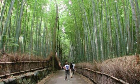 gambar taman bambu tangerang lokasi alamat jam buka
