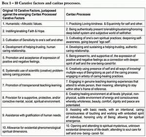 Jean Watson Theory Of Human Science And Human Caring