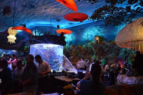Allcity Sadle Ah 02 White steunk aquariums the at home
