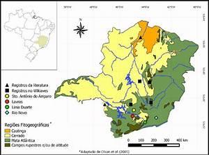 Mapa De Ocorr U00eancia De Aegolius Harrisii No Estado De Minas