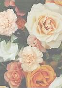Vintage flowers  for s...Vintage Flowers Tumblr
